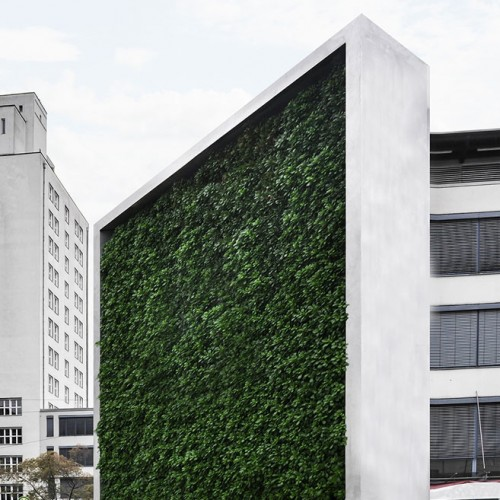 Innovative Luftreinigung durch intelligente Biofilter: der CityTree